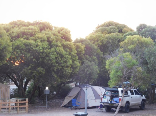 Marion Bay campsite