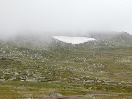 mid summer snow