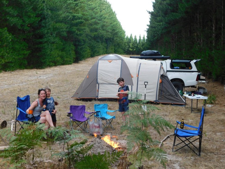 Mt Gambier Forest campsite