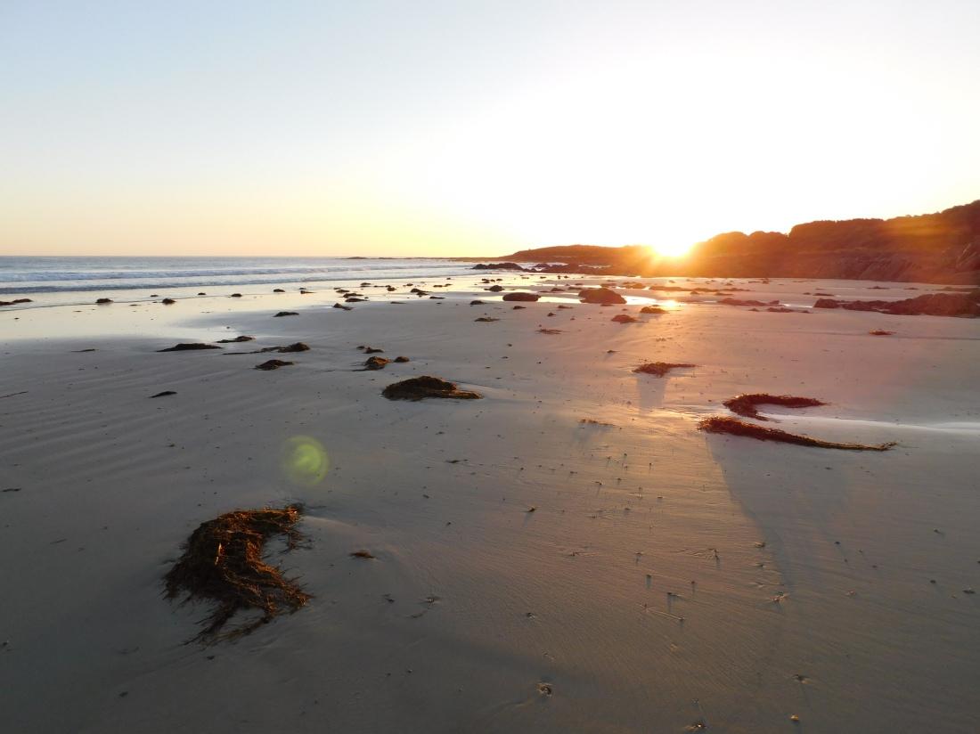 Sandy beach bear gully camp