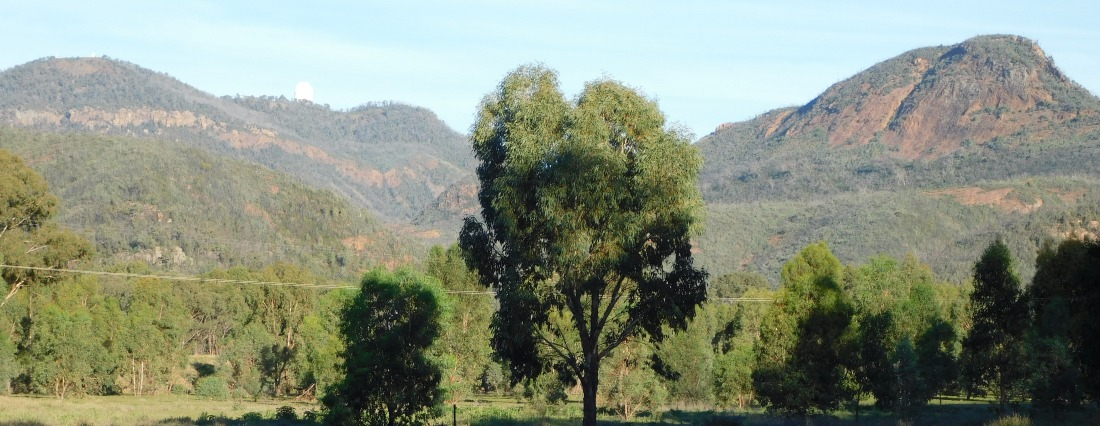 View from camp to siding spring observatory