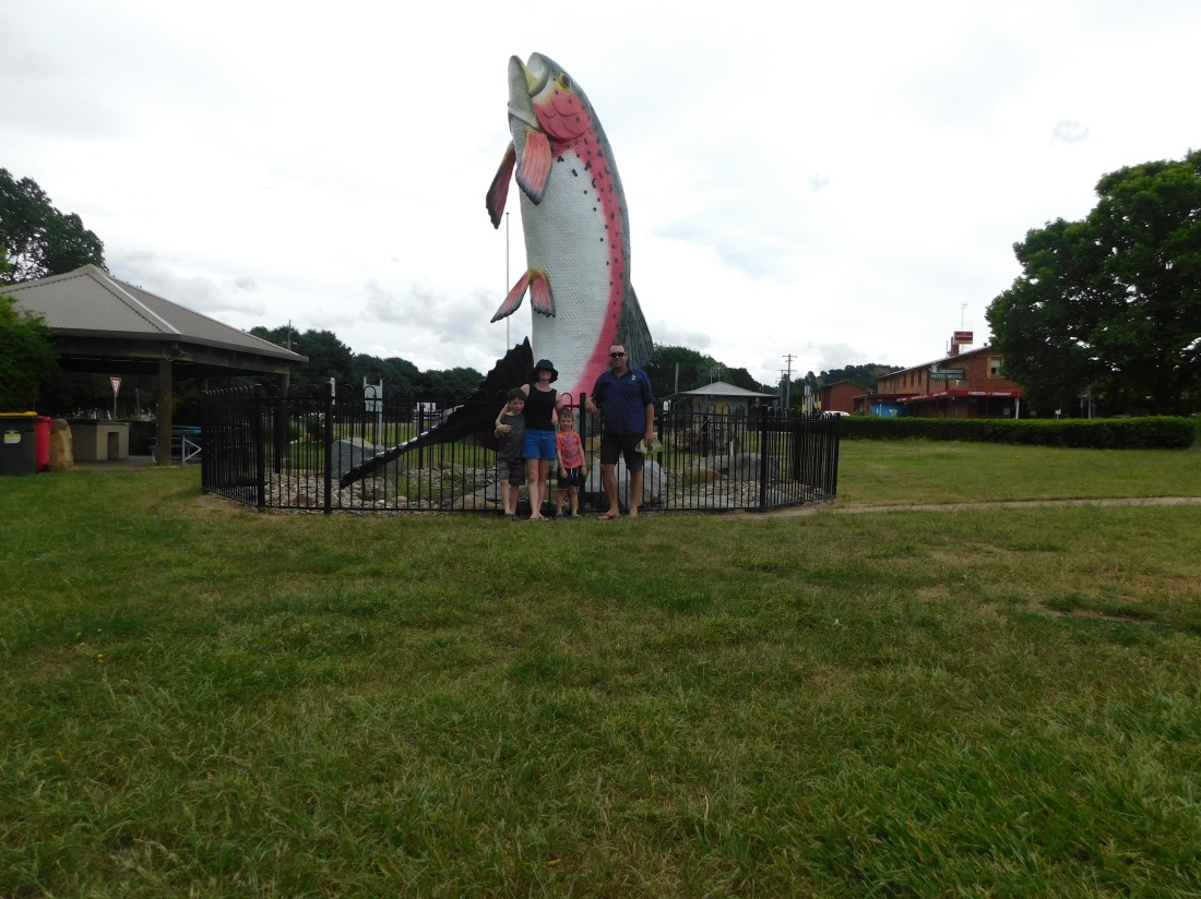 Yes yes it's the big trout adaminaby