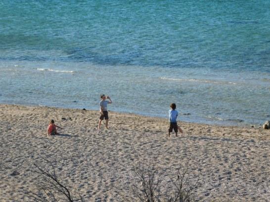 Beach cricket at Coffin Bay NP