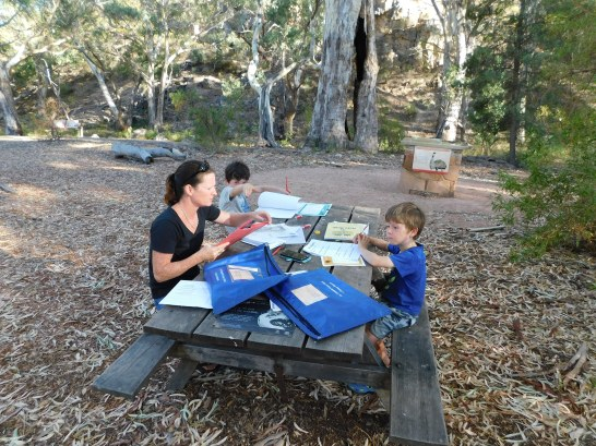 Classroom in the bush - Mt remarkable