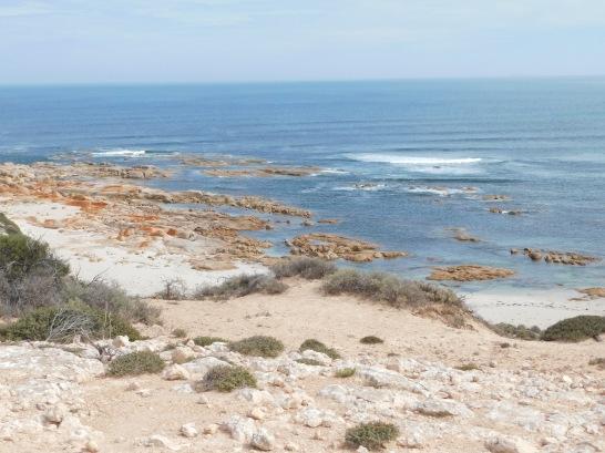 Coastine Baird bay south of Streaky