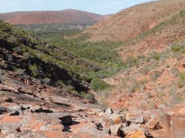 Gawler Ranges landscape