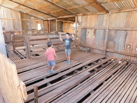 Nullabor - koonalda shearing shed