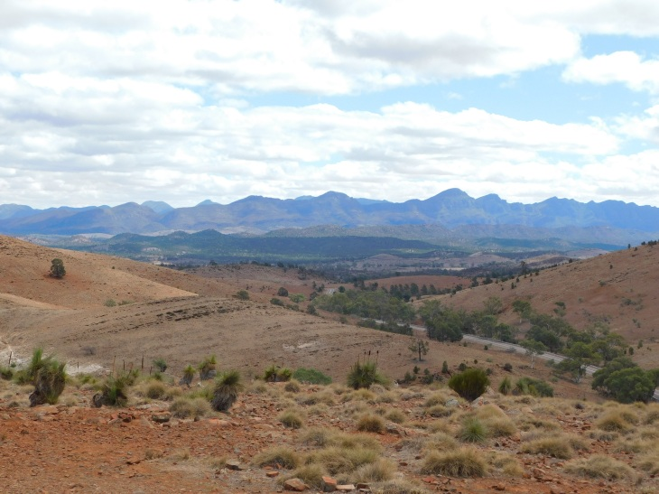 View back to the Wilpena Pound