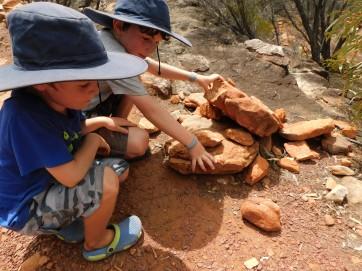 Wilpena gecko the boys found