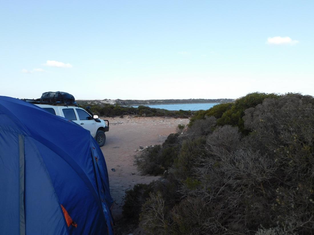 Wittelbee Conservation Park - oceanview campsite