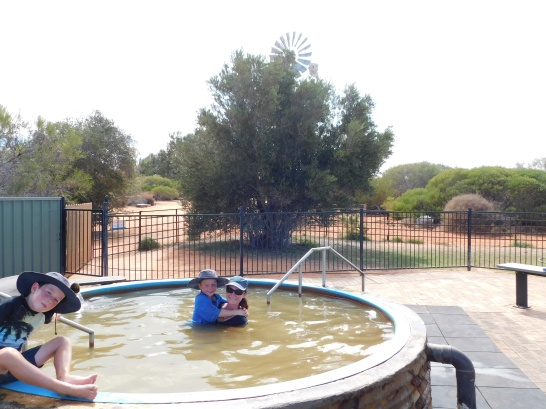 Denham hot spring in Fr Peron NP