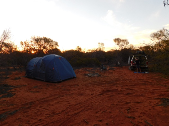 Hamelin bush camp