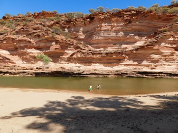 Kalbarri swimming in the river
