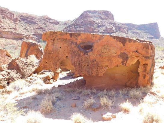 Kennedy Range dinosaur rock