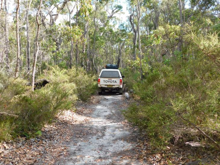 Margaret River overgrown access track