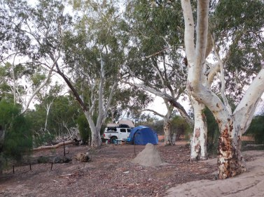 Murchison River camp