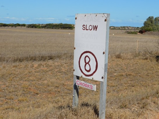 near gregory Sign slow down for chooks