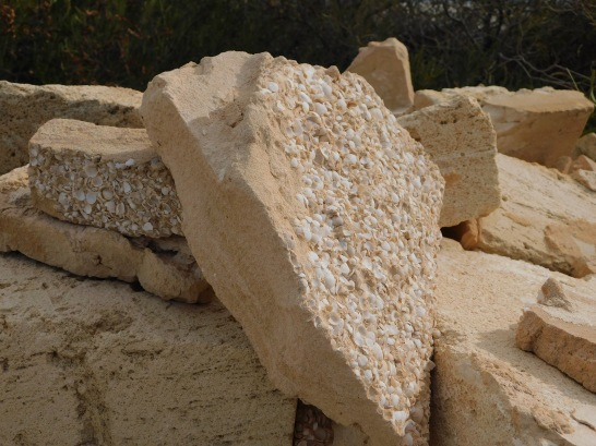 Shell beach building blocks