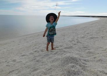 Shell beach2