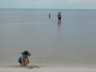 Shell Beach3