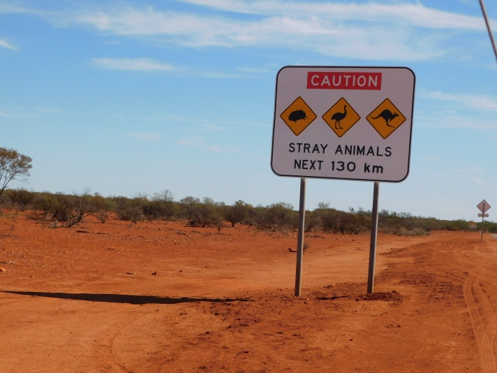 sign stray animals incl echidna
