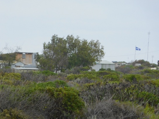 Wedge Island - flying their flag