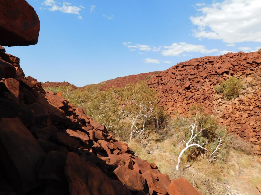 Burrup rock art gully