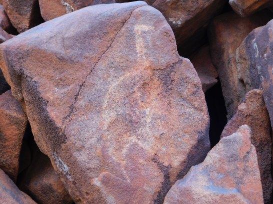 Burrup rock art maybe emu