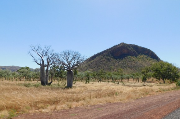 GRR eastern Kimberley