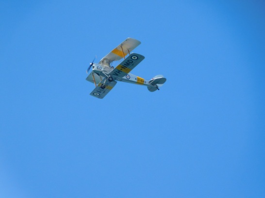 Darwin Plane