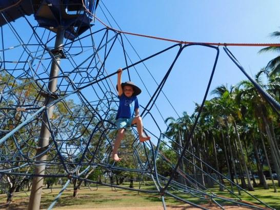 Darwin Playground Fun