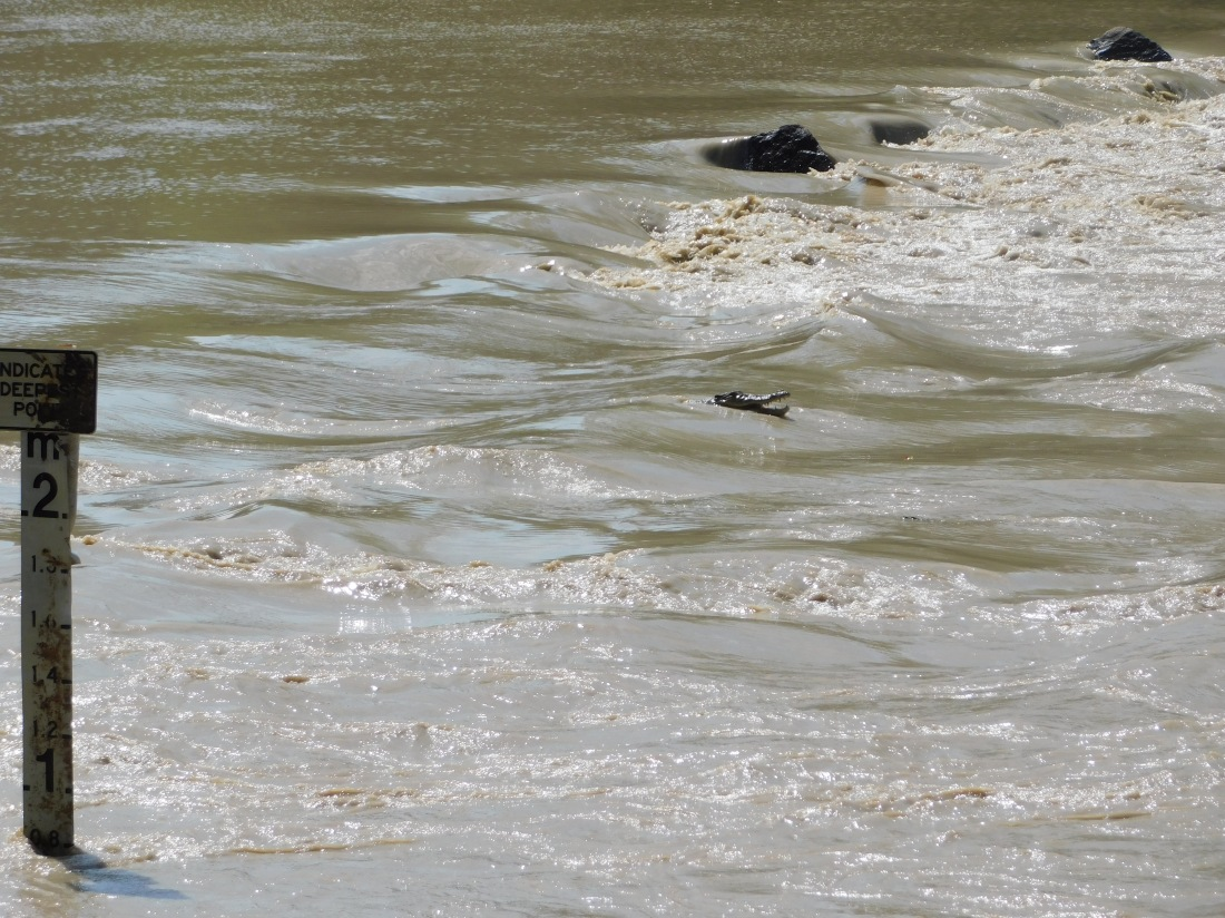 Kakadu Cahills crossing with croc