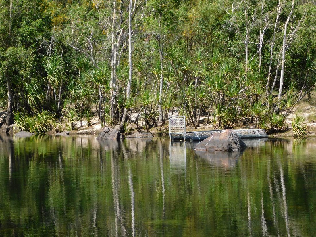 Kakadu croc trap set at Jim Jim Falls