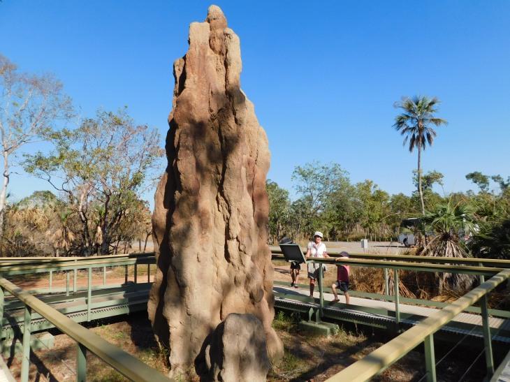 Litchfield Termite Mound