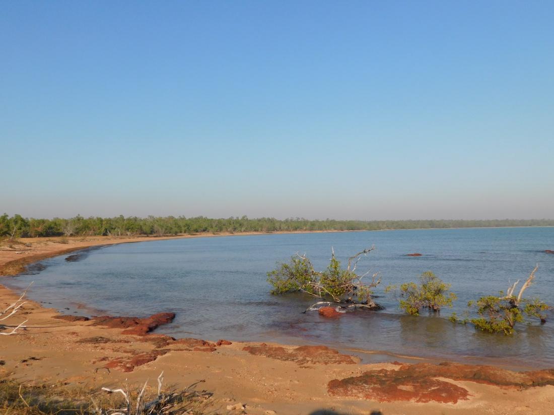 Coburg Mud crab hunting area