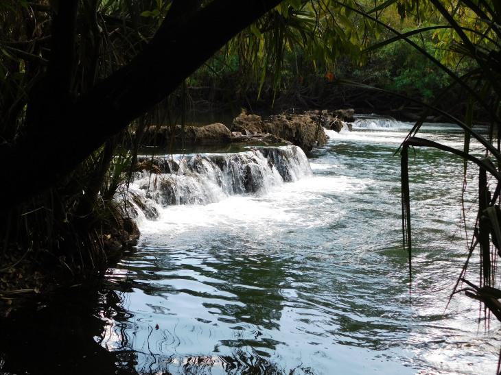 Mataranka Falls (3)