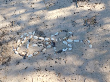Coongie Lake- Cameron's hellicopter made of mussle shells