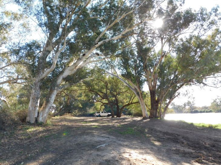 Cooper Creek (3)