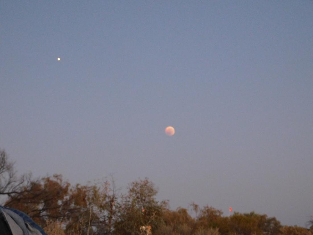 Dalhalsie-Blood moon