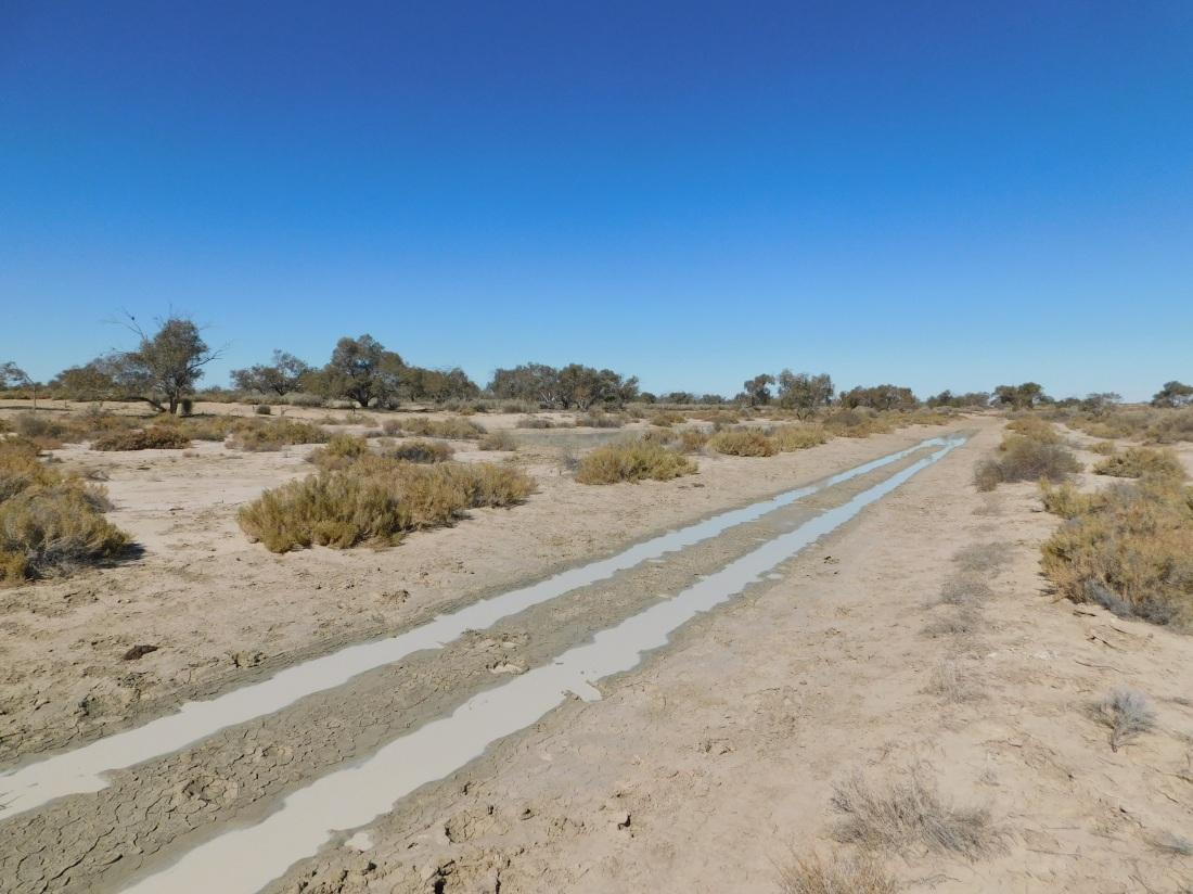 Gidgealpa Waterhole- boggy track