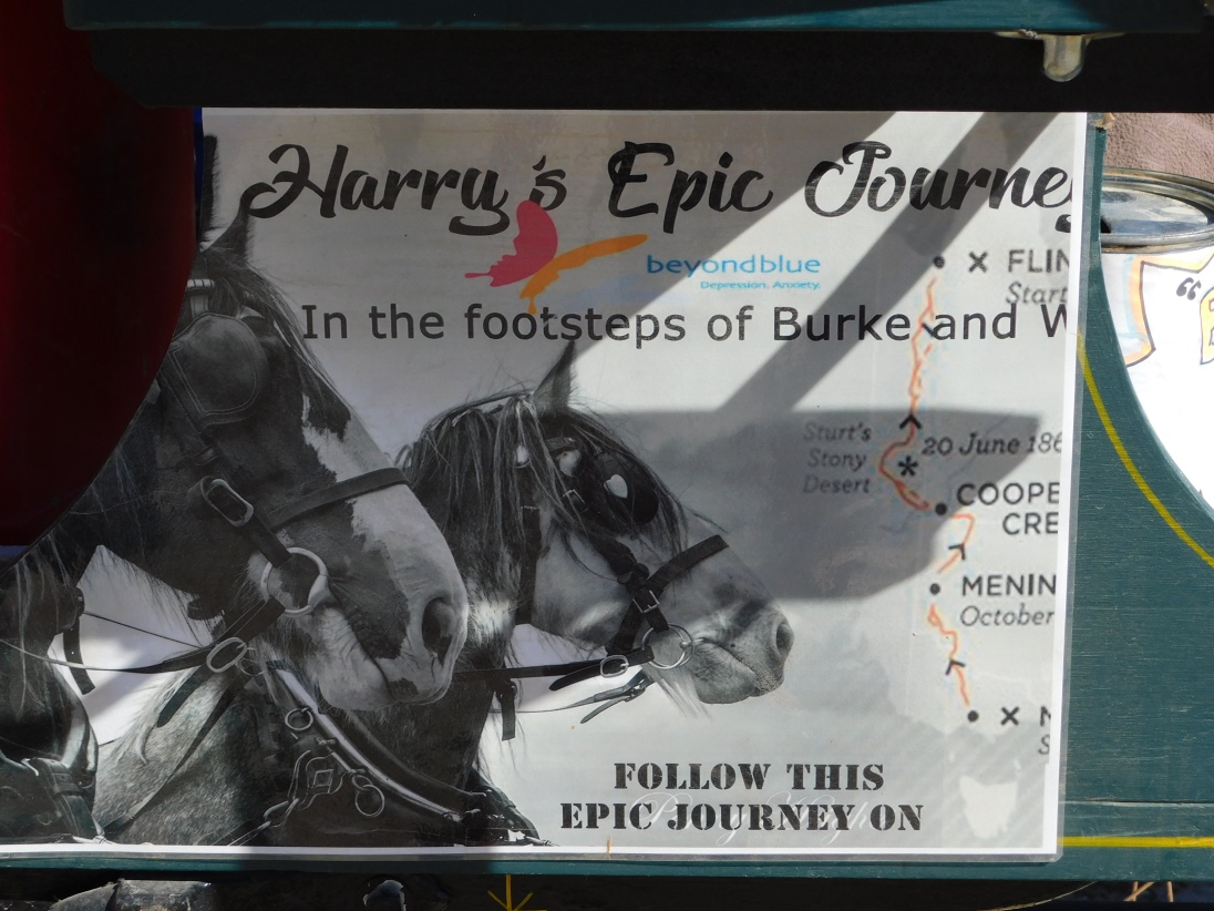 Harry's Epic Journey