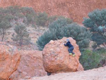 Kata Tjuta- Walpa Gorge (5)
