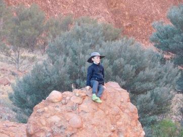Kata Tjuta- Walpa Gorge (6)