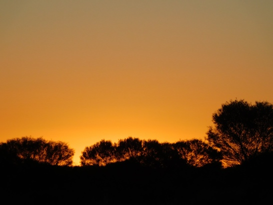 Kings Canyon Camp sunset