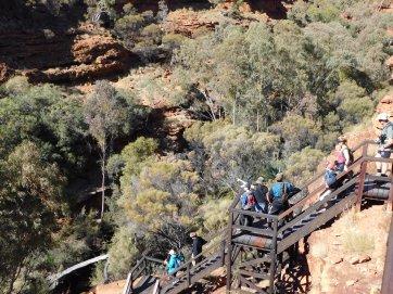 Kings Canyon Rim walk (14)