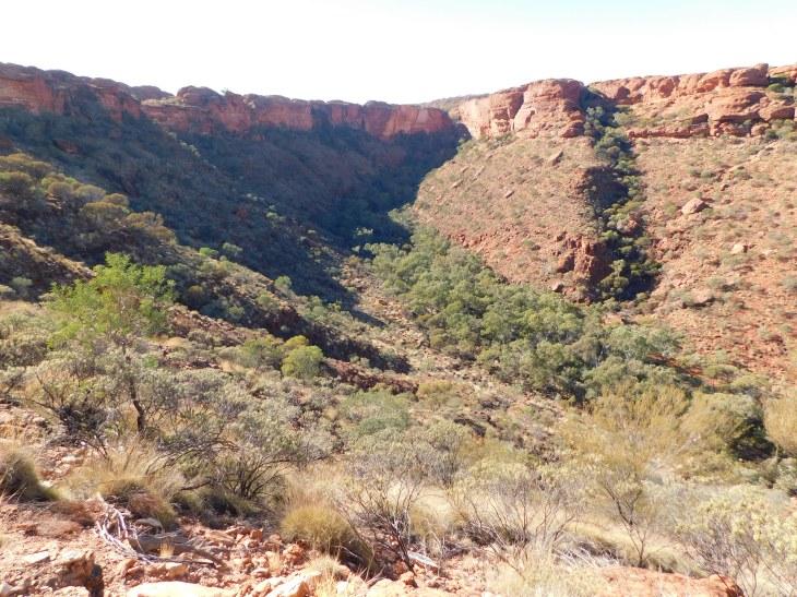 Kings Canyon Rim walk (2)