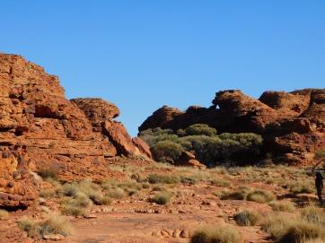 Kings Canyon Rim walk (6)