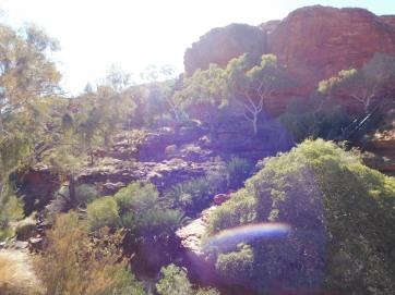 Kings Canyon Rim walk-Garden of Eden (2)