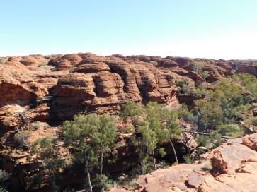 Kings Canyon Rim walk-Garden of Eden (4)