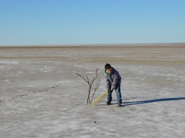 Lake Eyre- Cricket (2)